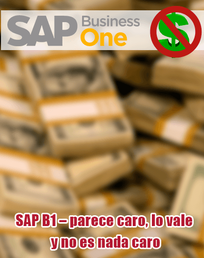 SAP Business One, ERP, Pymes, Consultores, Mexico